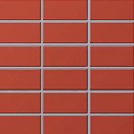 Gạch INAX sản xuất trong nước -255/DPL-101V
