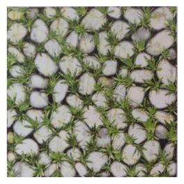 Gạch Đồng Tâm Granite 40×40 MT-GDT4040Clg003